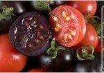 download3-150x106 futur de notre nourriture dans Ma Planète
